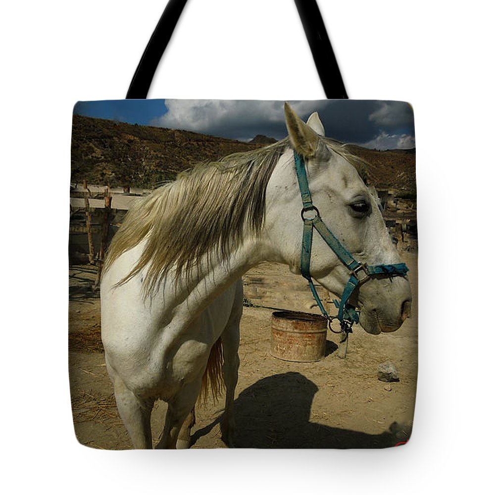 Colette Tote Bag featuring the photograph Featured Cute Friend In The Mountain Spain by Colette V Hera Guggenheim