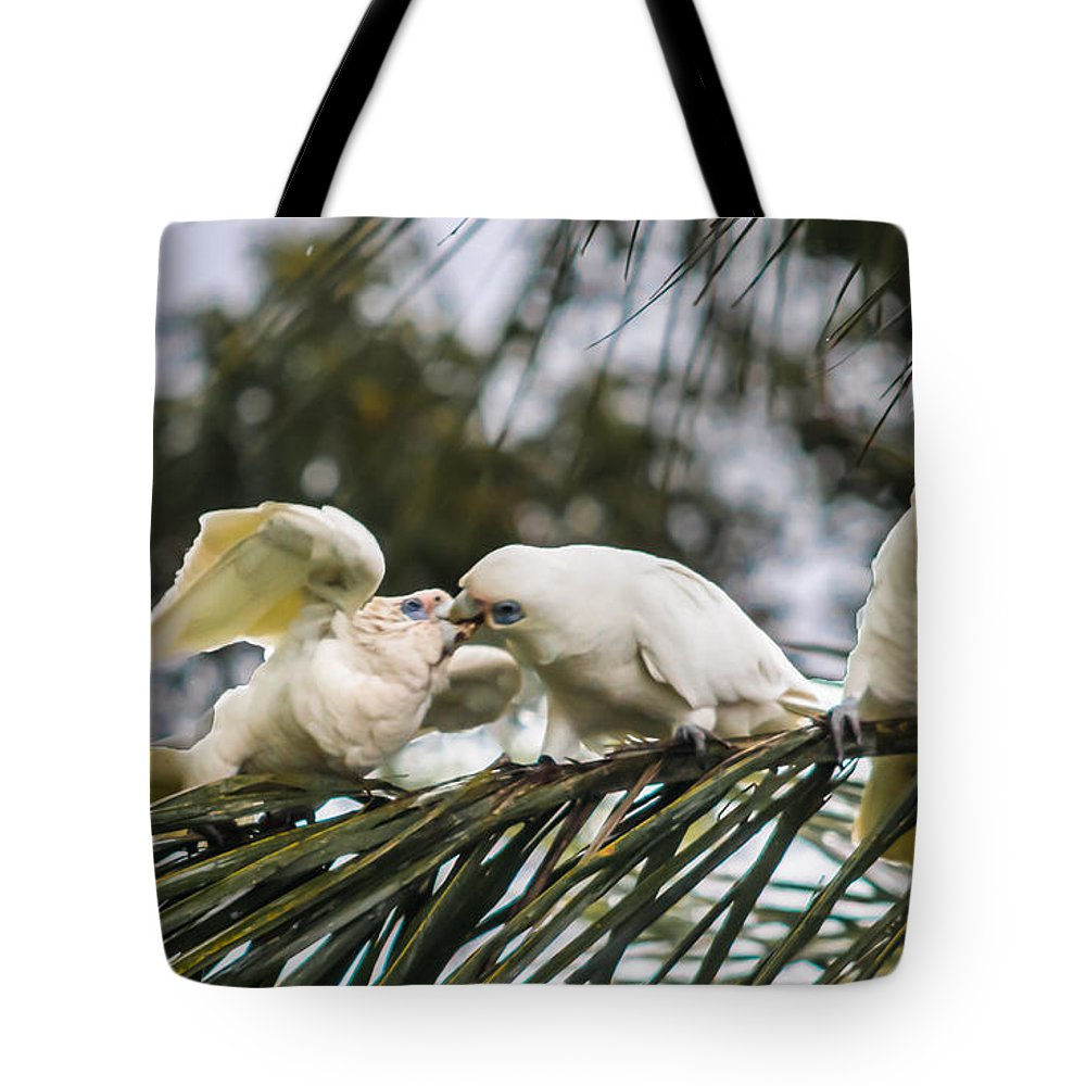 Feed Tote Bag featuring the photograph Feed Me by Michael Podesta