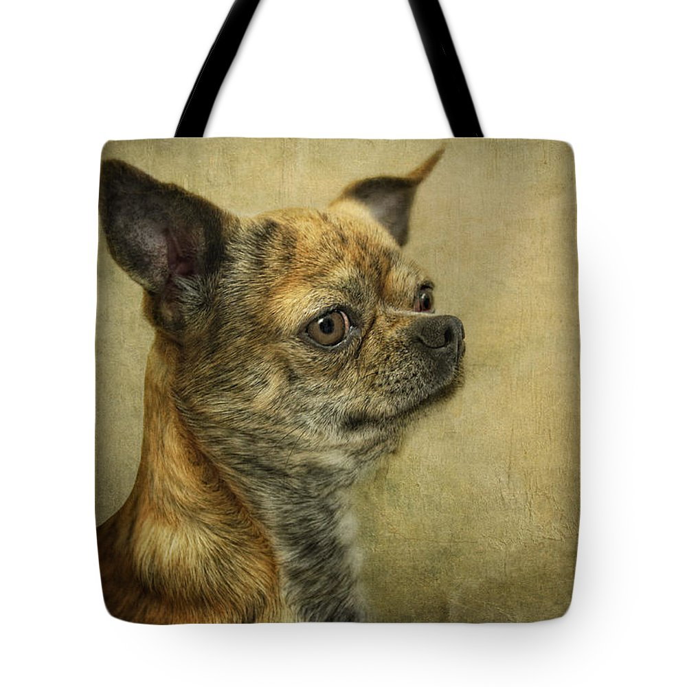 Dog Tote Bag featuring the photograph Feivel by Claudia Moeckel