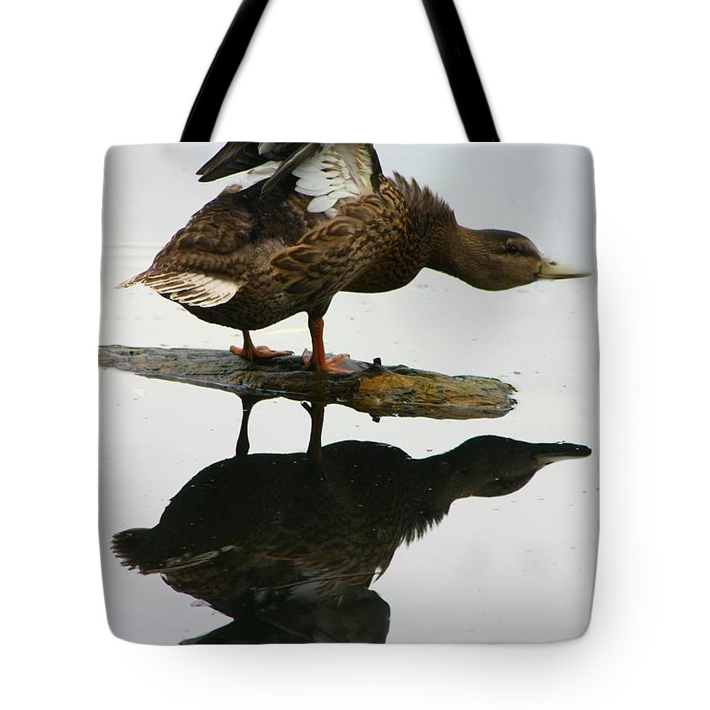 Ducks Tote Bag featuring the photograph Female Mallard Duck by Amanda Stadther