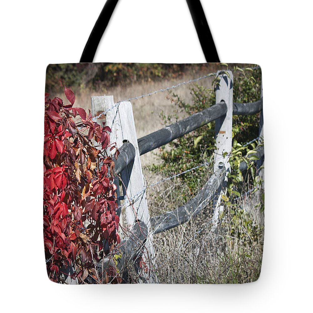Virginia Creeper Tote Bag featuring the photograph Fence And Creeper by Teresa Mucha