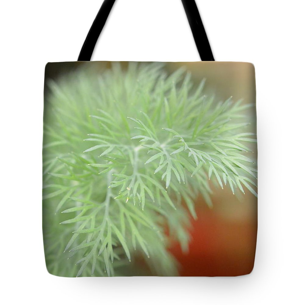 Fennel Tote Bag featuring the photograph Fennel Plant by Nicki Bennett
