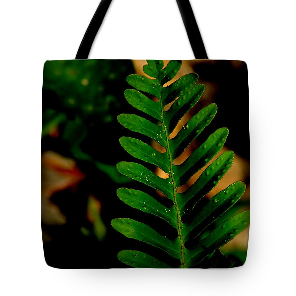 Eaf Tote Bag featuring the photograph Fern by David Weeks
