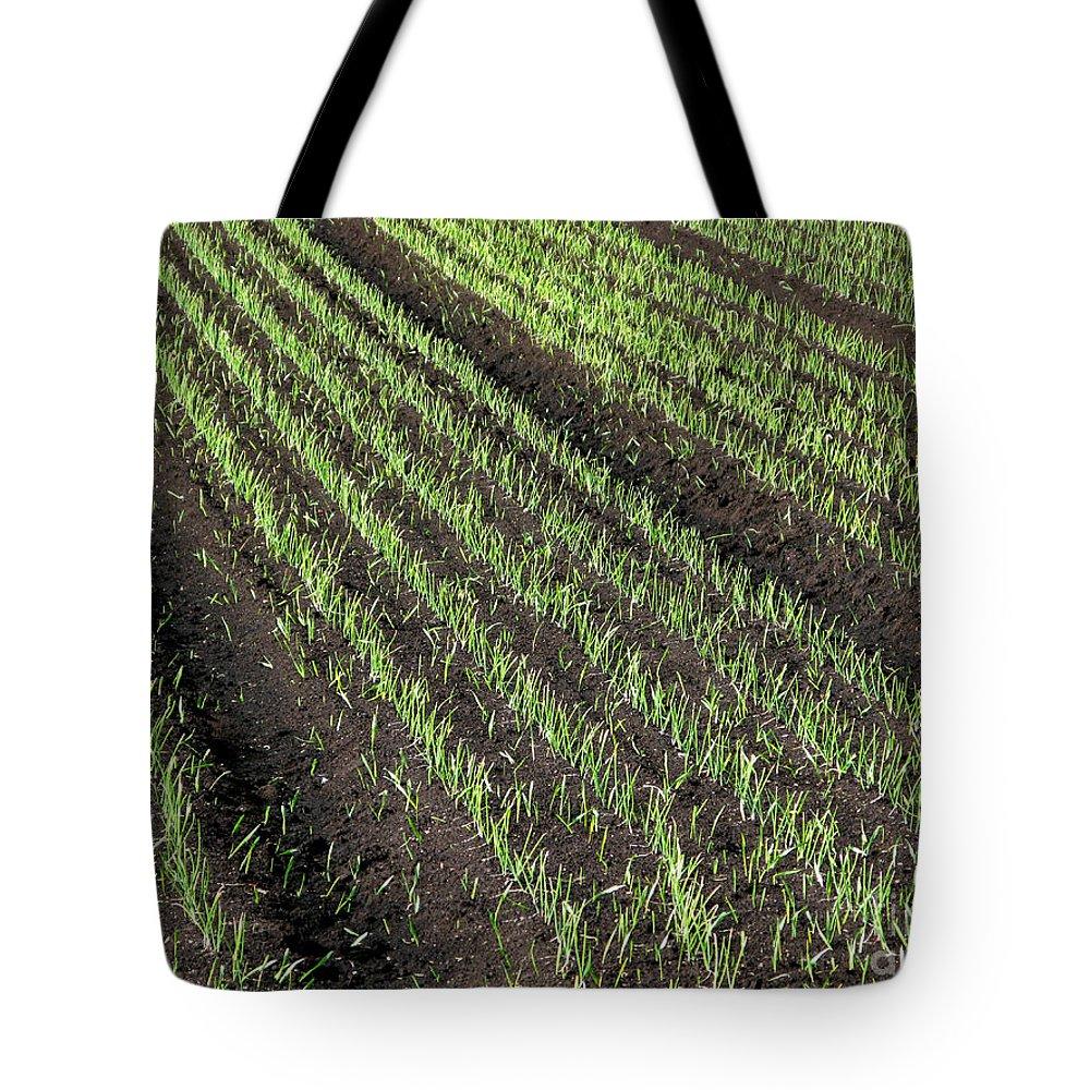 Fertile Tote Bag featuring the photograph Fertile Farmland by Ann Horn