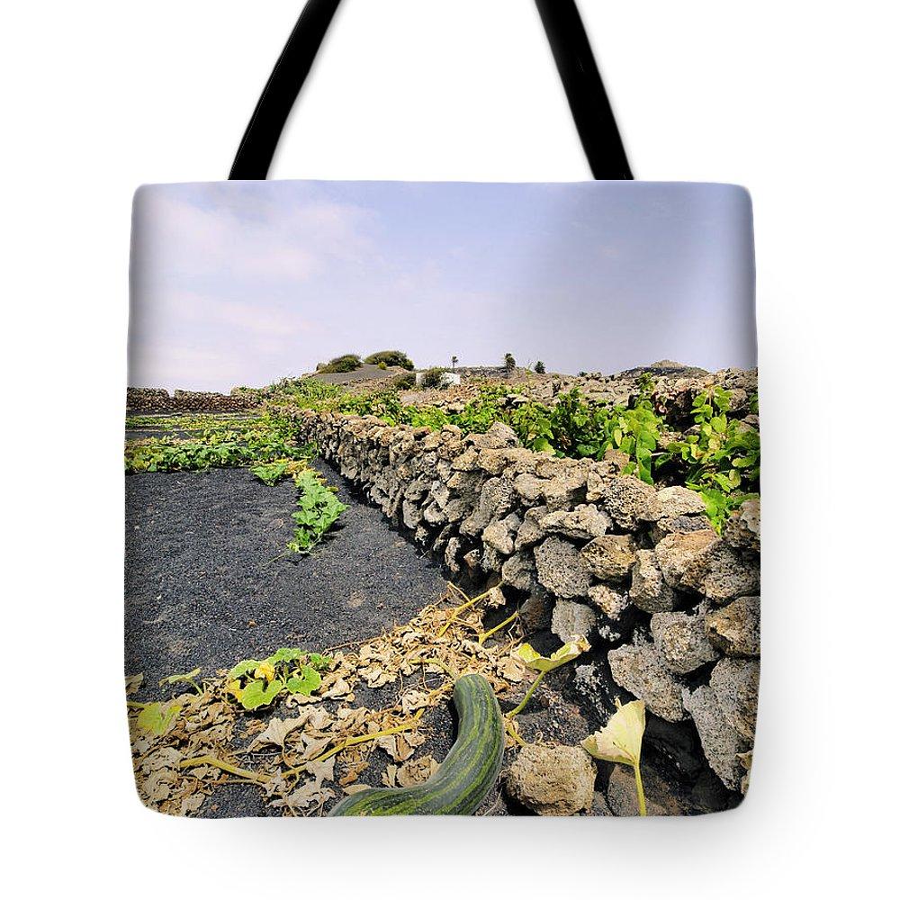 Lanzarote Tote Bag featuring the photograph Field by Karol Kozlowski