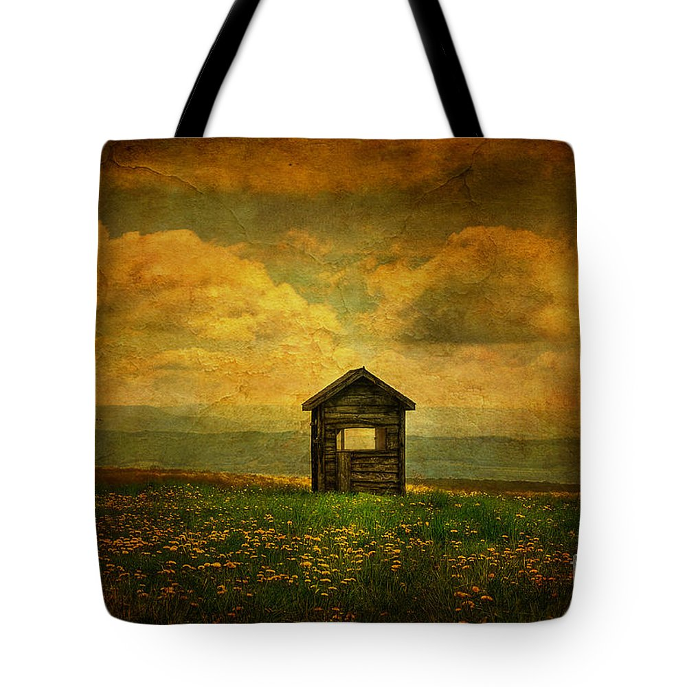 Shed Tote Bag featuring the photograph Field Of Dandelions by Lois Bryan