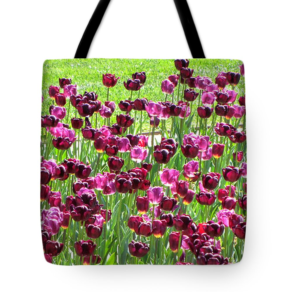 Duane Mccullough Tote Bag featuring the photograph Field Of Purple Tulips 1 by Duane McCullough