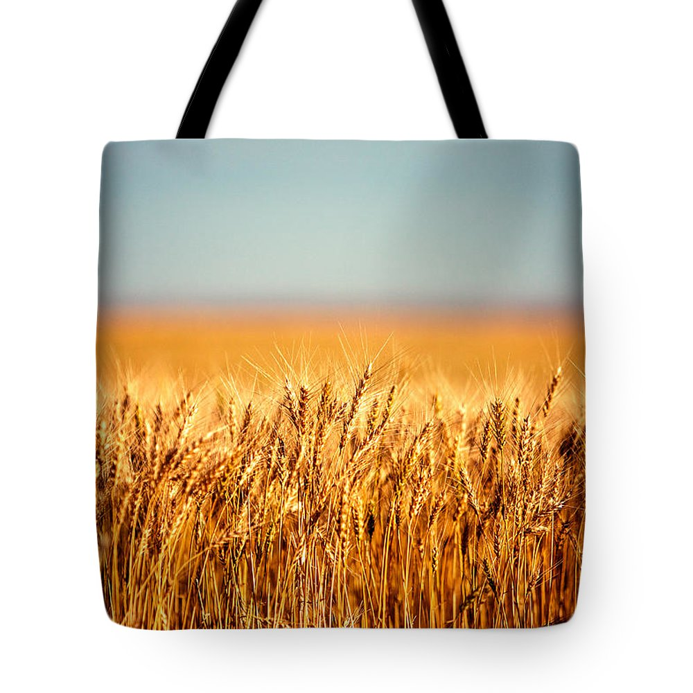 Wheat Tote Bag featuring the photograph Field Of Wheat by Todd Klassy