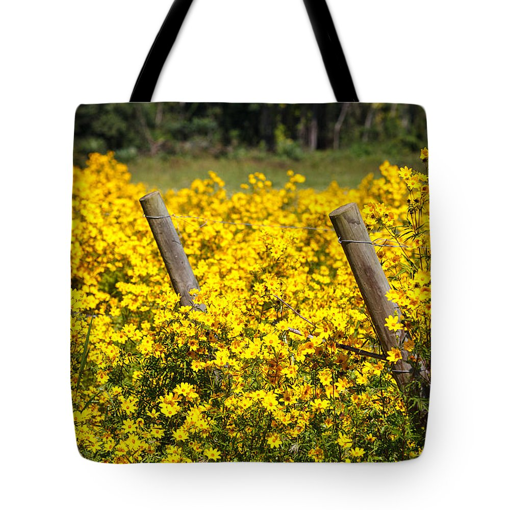 Yellow Tote Bag featuring the photograph Field Of Yellow by Carol VanDyke