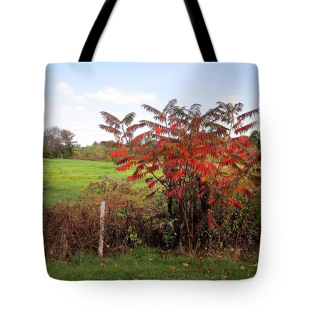 Field Tote Bag featuring the photograph Field With Sumac In Autumn by MTBobbins Photography
