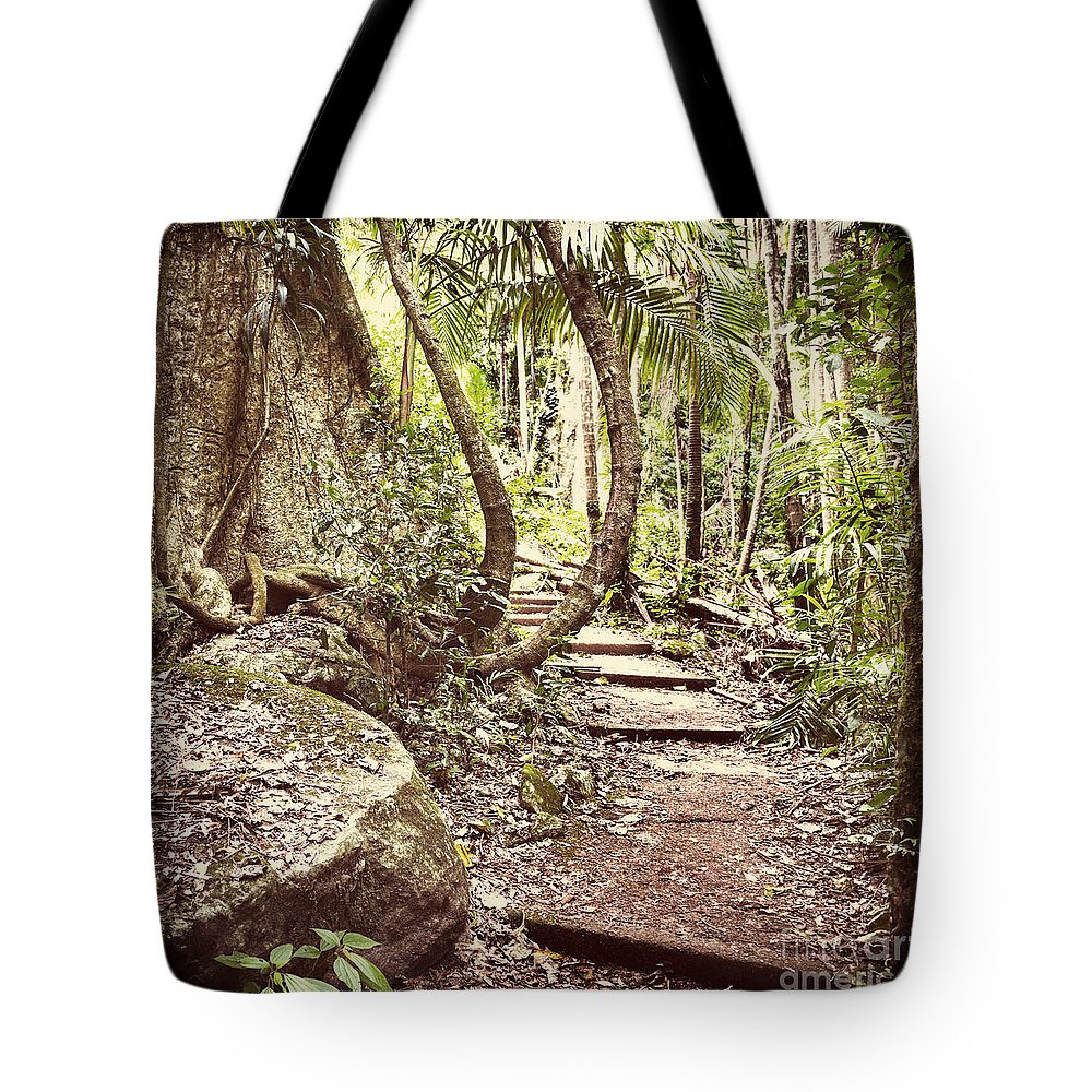 Filtered Tote Bag featuring the photograph Filtered Forest by Tim Hester