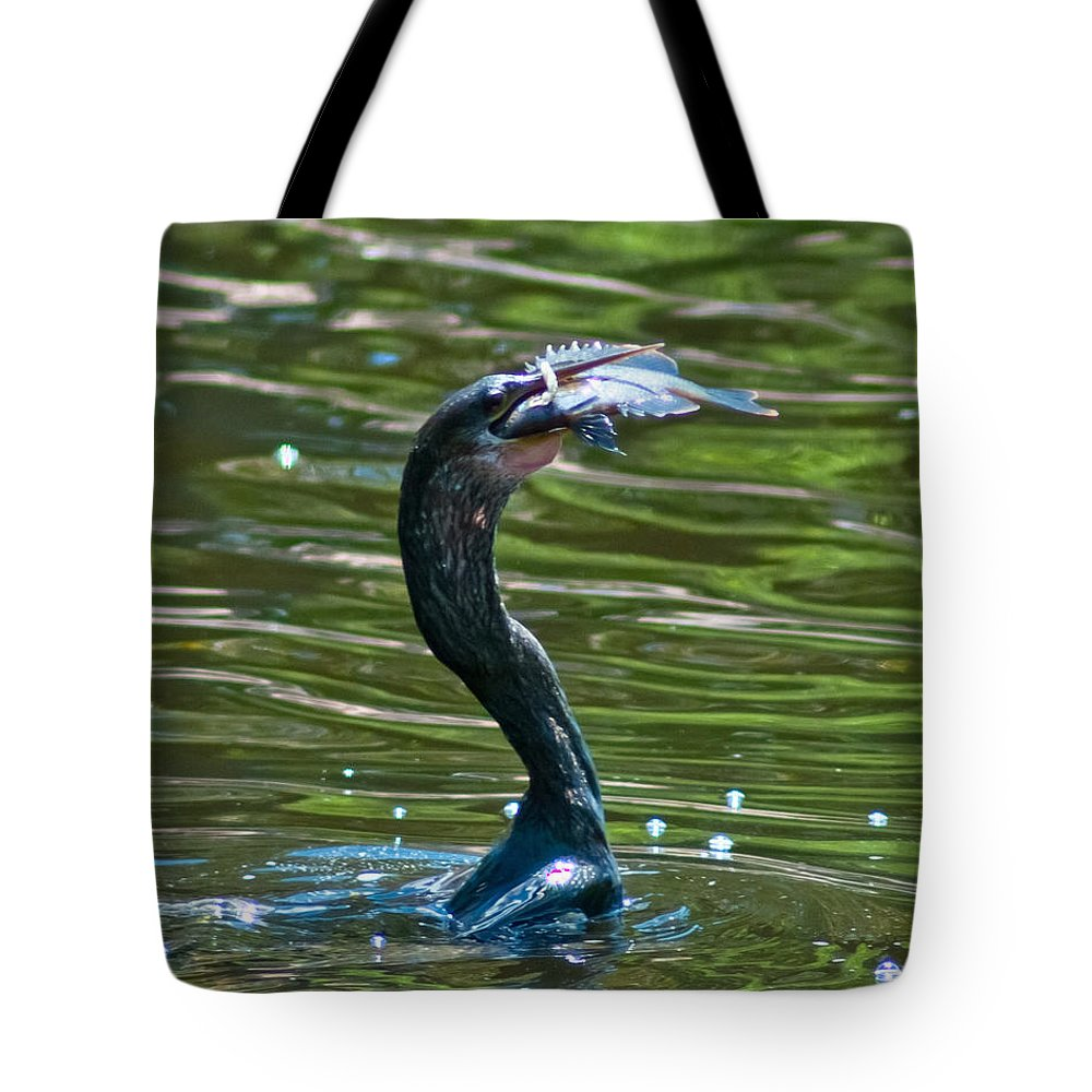 Cormorant Tote Bag featuring the photograph Fine Dining by Stephen Whalen
