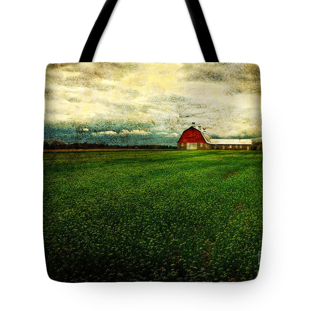 Barn Tote Bag featuring the photograph Finished by Lois Bryan