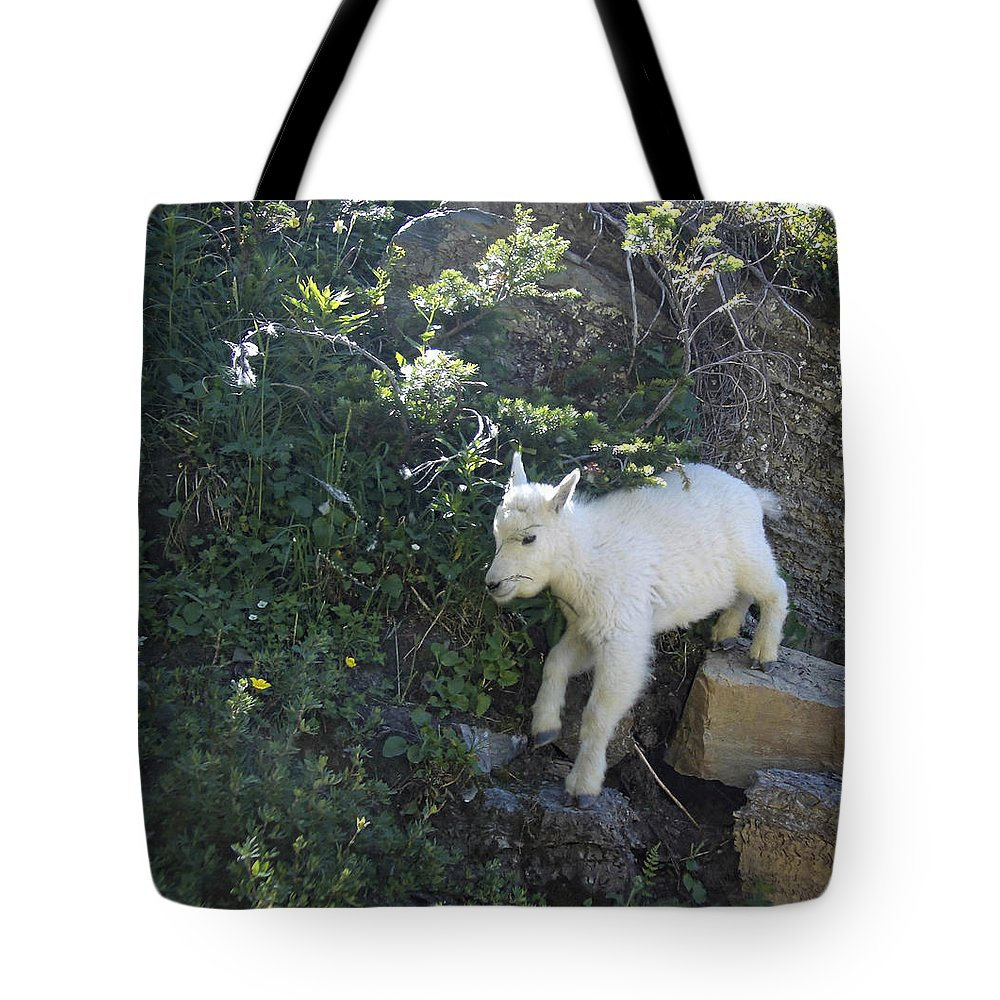 Mountain Goat Photograph Tote Bag featuring the digital art First Ledge Leap by Robert Taylor