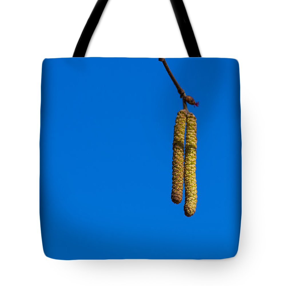 Aglet Tote Bag featuring the photograph First Ones - Featured 2 by Alexander Senin