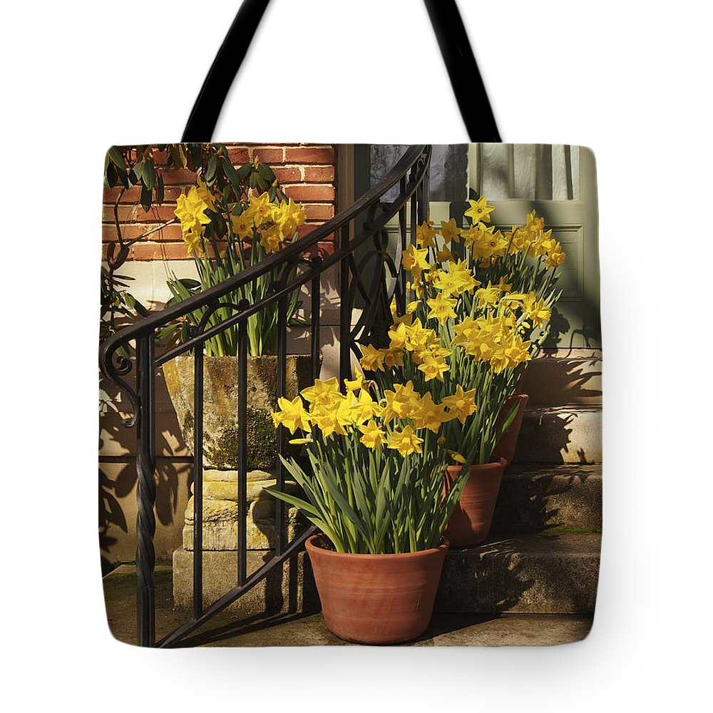 Spring Pots Tote Bag featuring the photograph First Signs Of Spring by Jacklyn Duryea Fraizer
