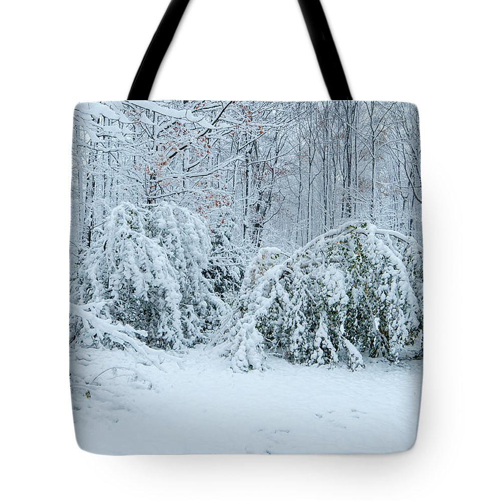 First Snow Tote Bag featuring the photograph First Snow by Richard Kitchen