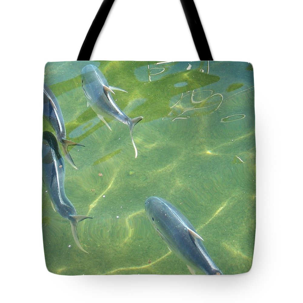 Fish Tote Bag featuring the photograph Fish by Chuck Hicks