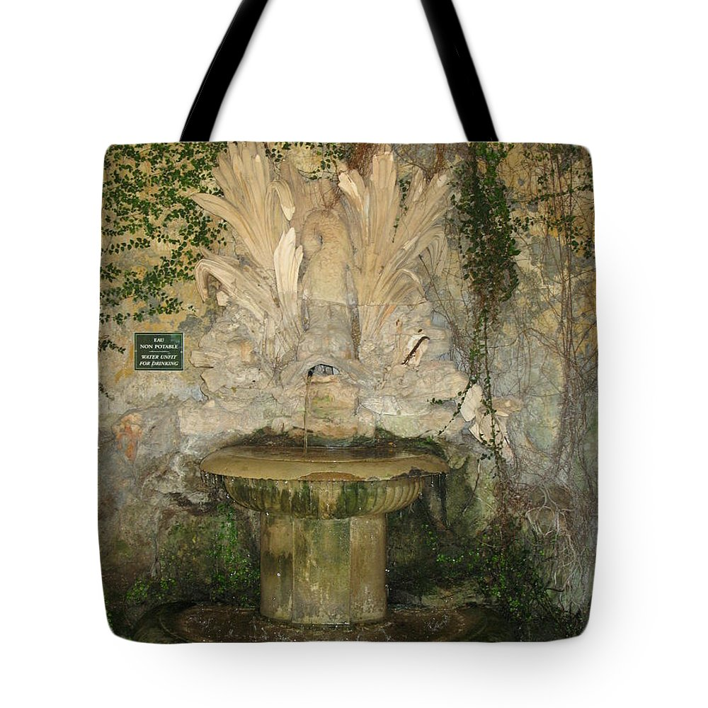 Fountain Tote Bag featuring the photograph Fish Fountain by Christiane Schulze Art And Photography