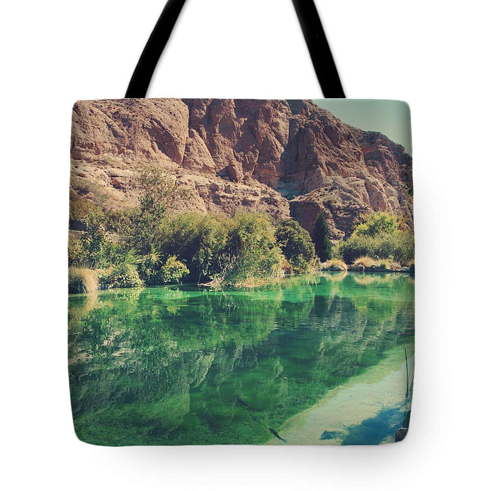 Whitewater Preserve Tote Bag featuring the photograph Fish Gotta Swim by Laurie Search