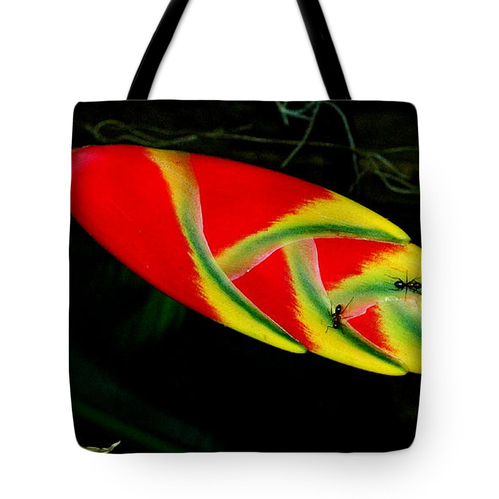 Heliconia Tote Bag featuring the photograph Fish Out Of Water by Norman Johnson