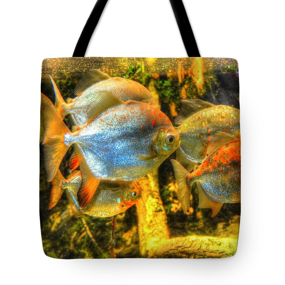 Fish Tote Bag featuring the photograph Fishfull Thinking by Debbi Granruth