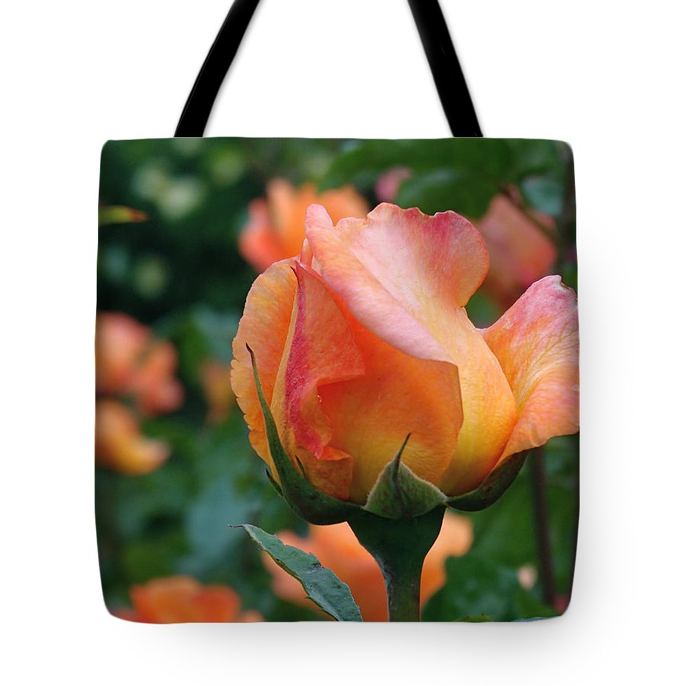 Rose Tote Bag featuring the photograph Fit For A Queen by Rona Black