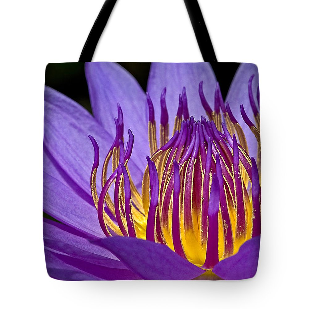 Waterlily Tote Bag featuring the photograph Flaming Heart by Susan Candelario