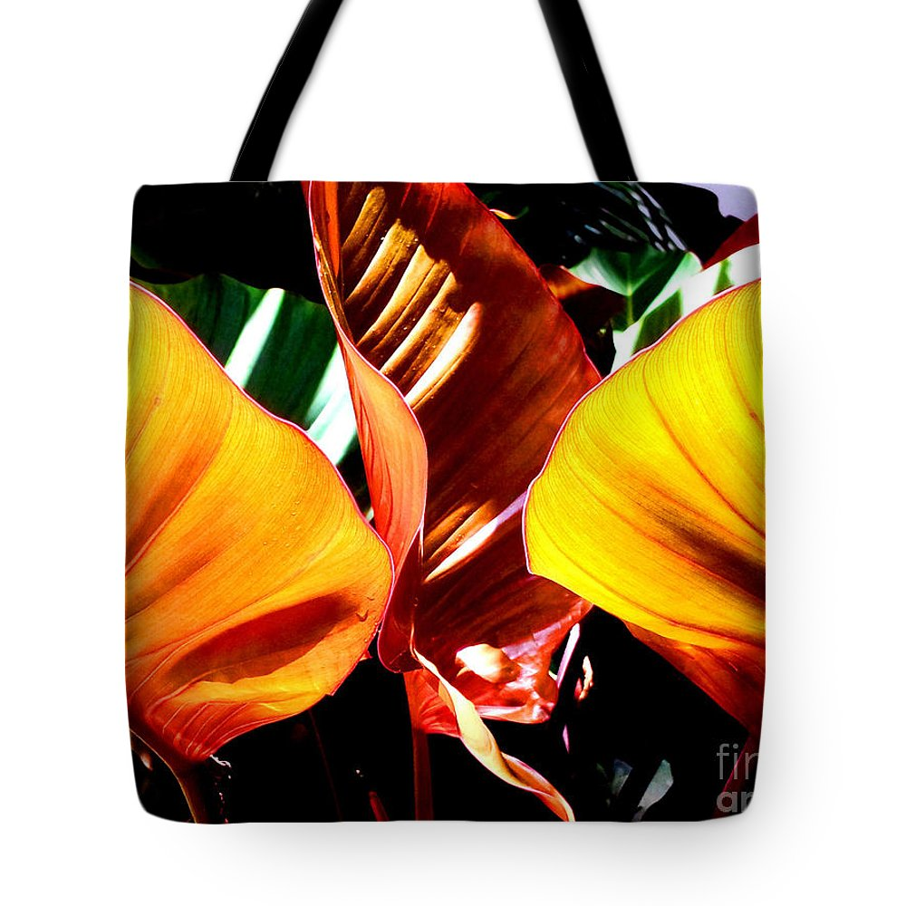 Plant Tote Bag featuring the photograph Flaming Plant by Kristine Merc