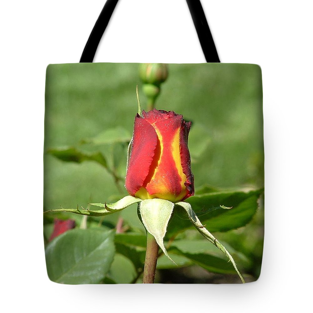 Flower Tote Bag featuring the photograph Flaming Rose by Lorna Hooper