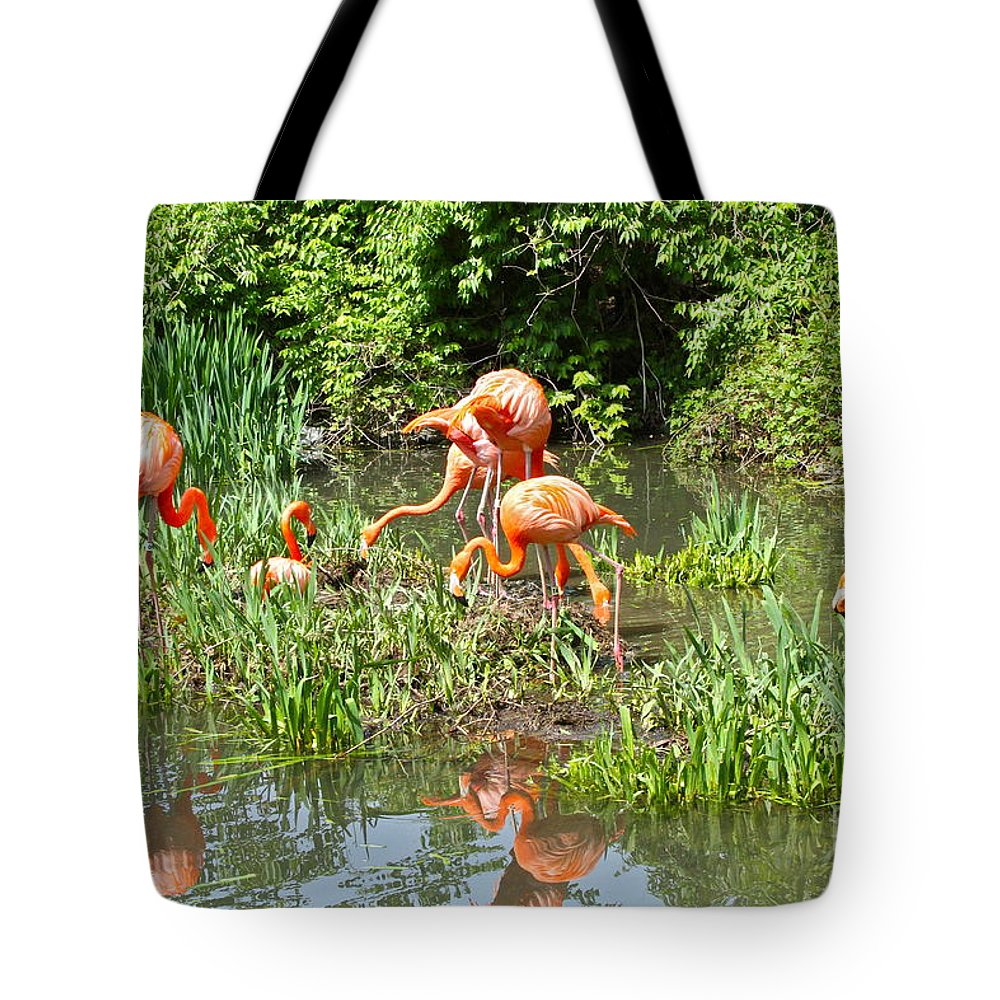 Flamingo Tote Bag featuring the photograph Flamingo Island by Rick Monyahan