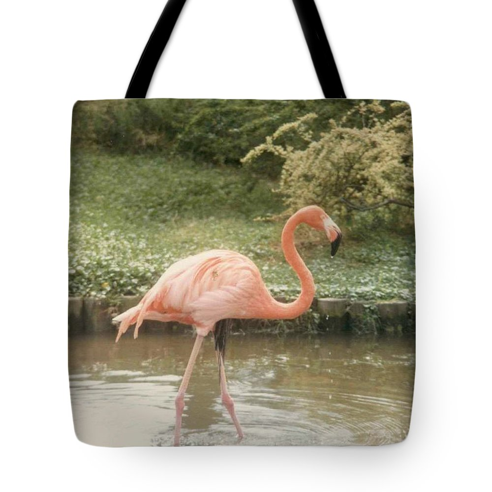 Birds Tote Bag featuring the photograph Flamingo by Jeffery L Bowers