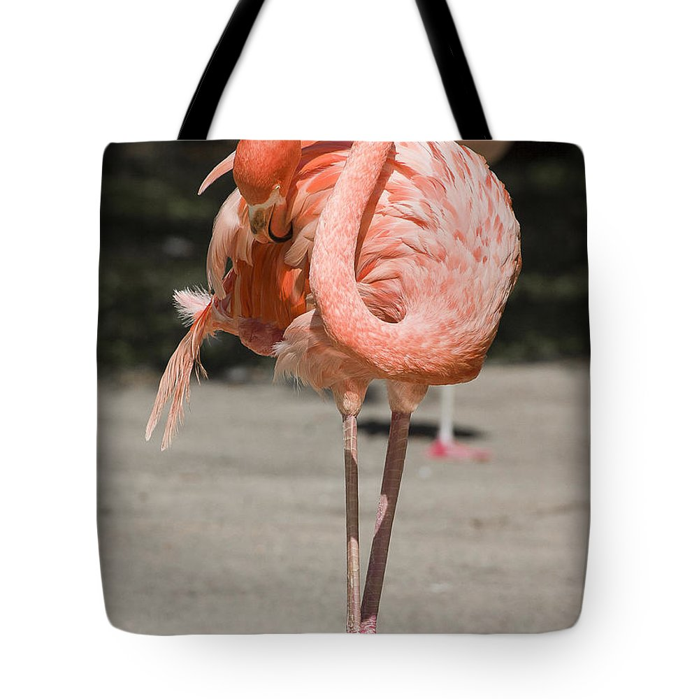 Birds Tote Bag featuring the photograph Flamingo by Steven Ralser