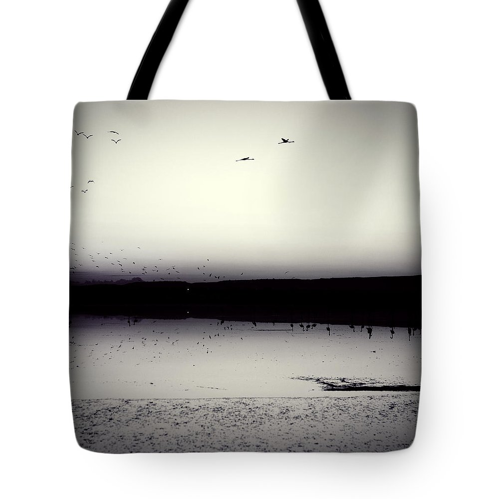 Air Tote Bag featuring the photograph Flamingos by Stelios Kleanthous