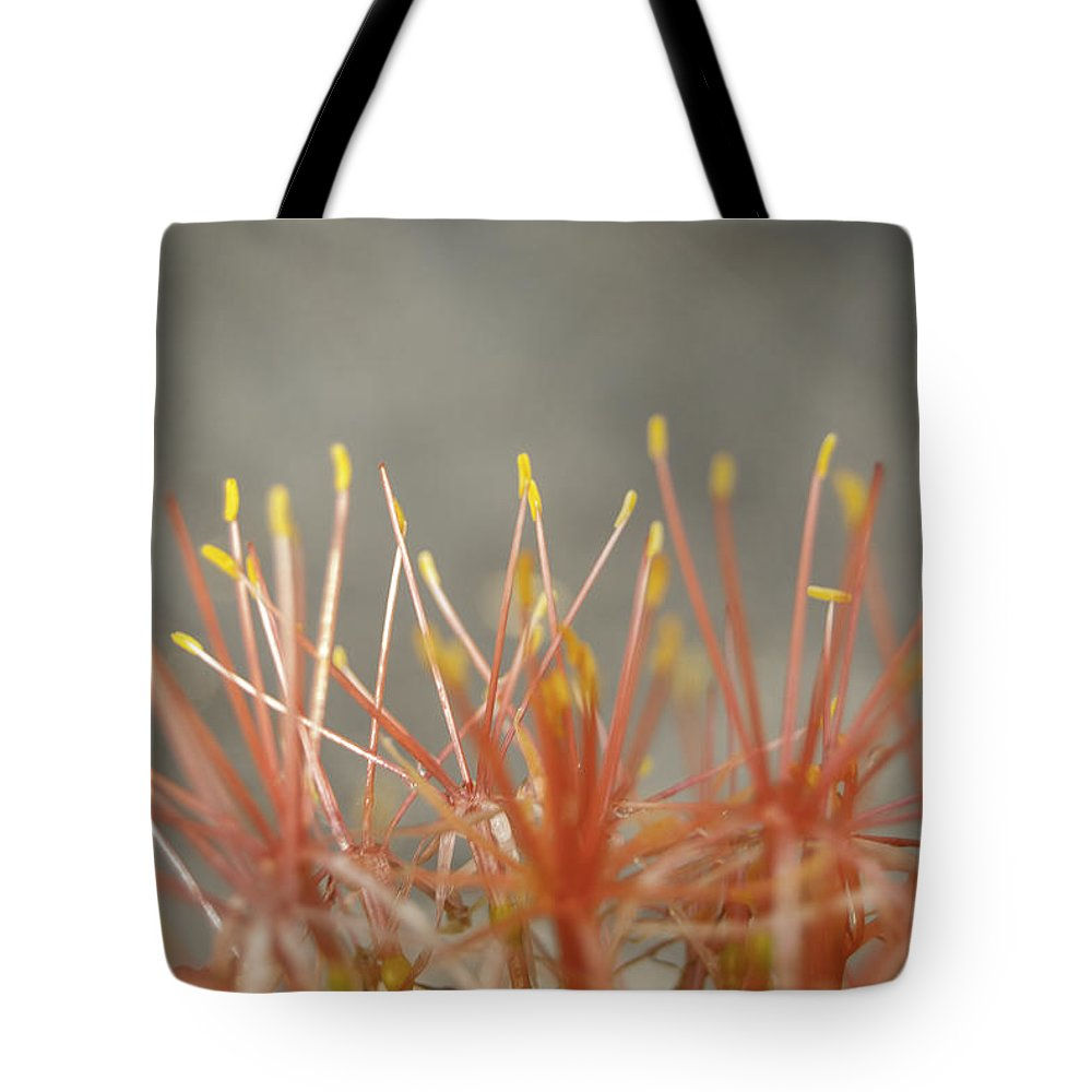Flower Tote Bag featuring the photograph Flashdance by Judy Hall-Folde