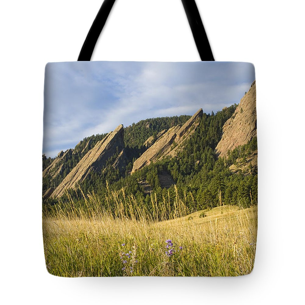 Boulder Photos Tote Bag featuring the photograph Flatirons With A Purple Wildflower by James BO Insogna