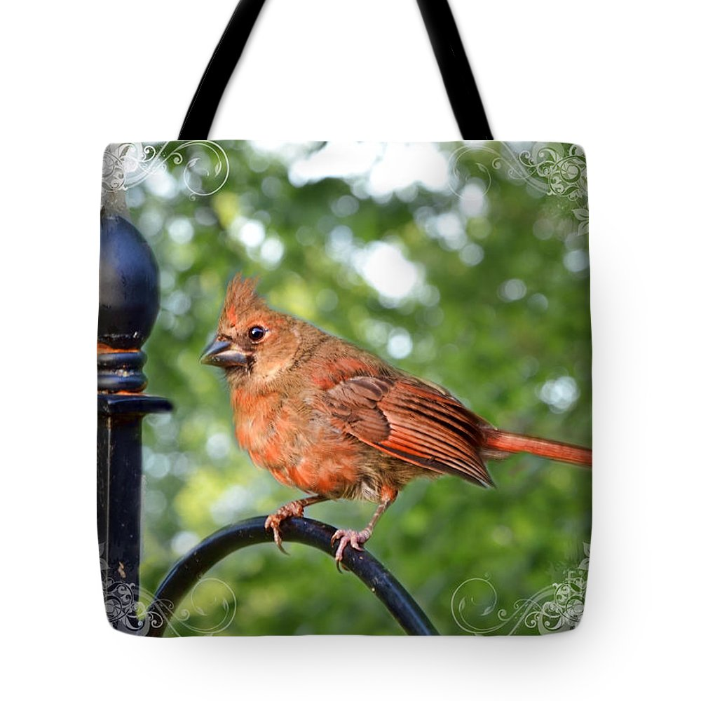 Nature Tote Bag featuring the photograph Fledgling Cardinal II by Debbie Portwood