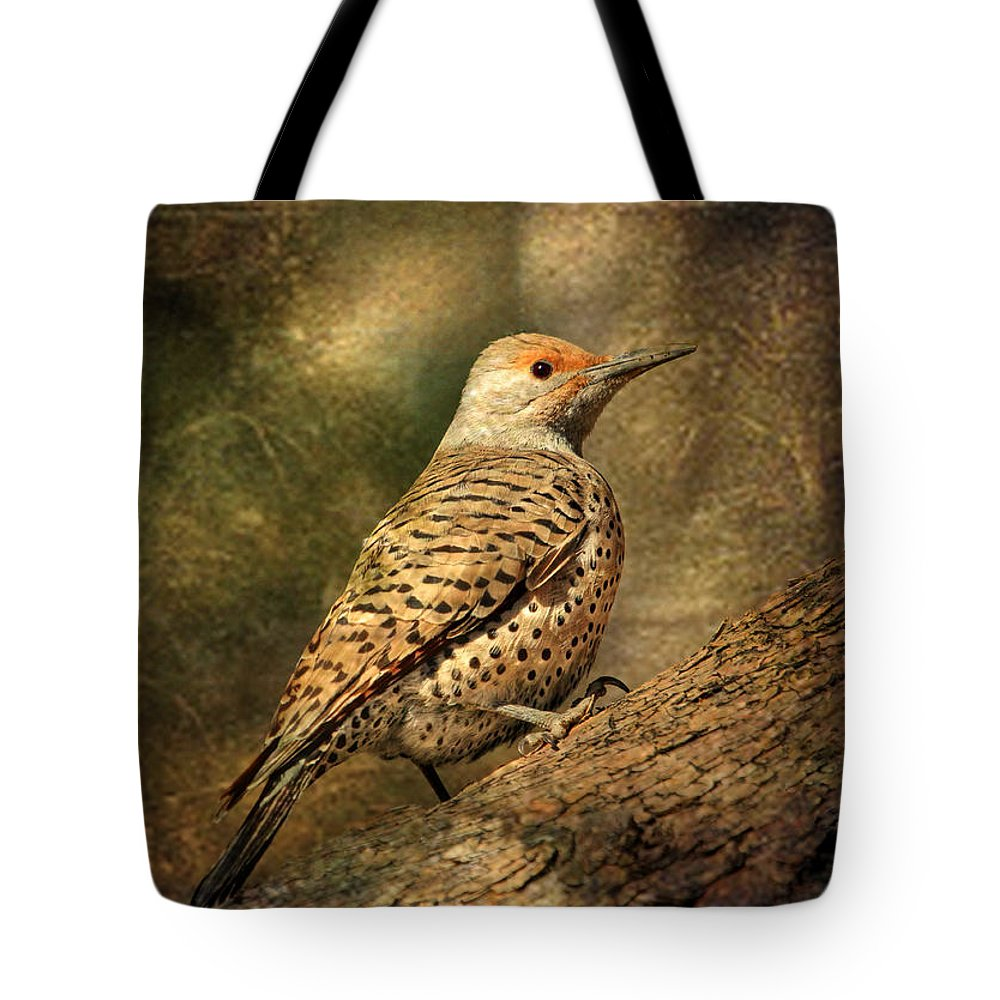 Northern Flicker Lifestyle Products