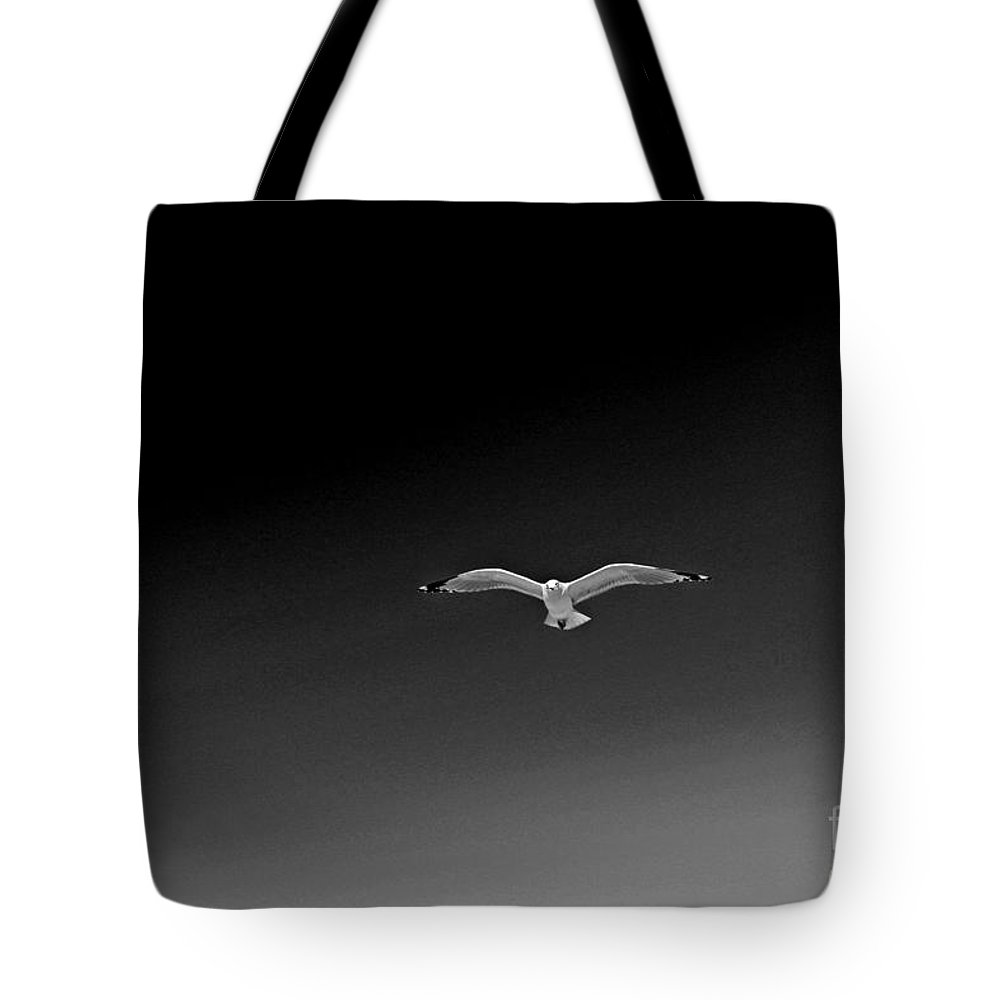 Seagulls Flying In Pattern Tote Bag featuring the photograph Flight Pattern Vii by Earl Johnson