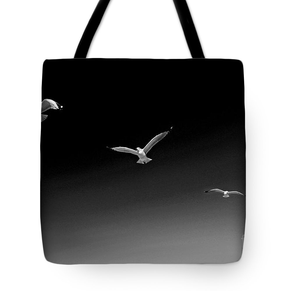 Landscape Tote Bag featuring the photograph Flight Pattern Viii by Earl Johnson