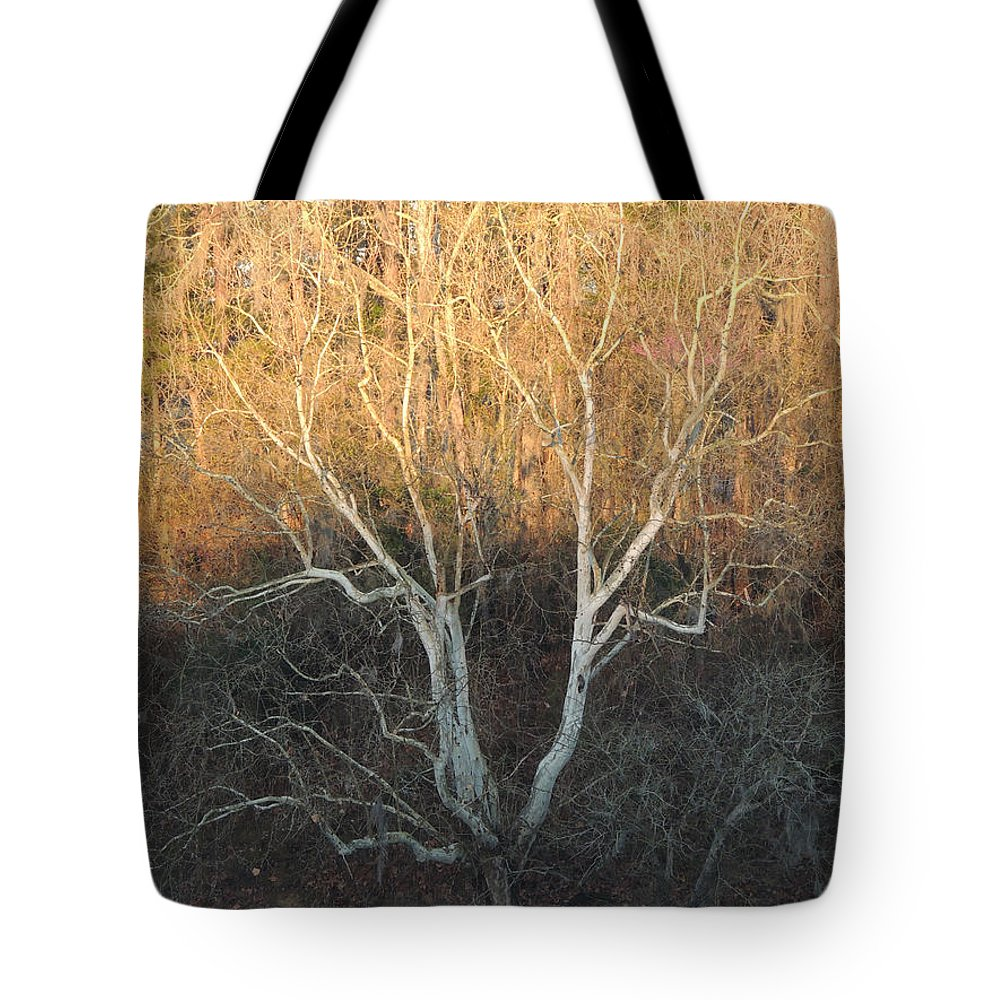 Digital Photography Tote Bag featuring the photograph Flint River 12 by Kim Pate