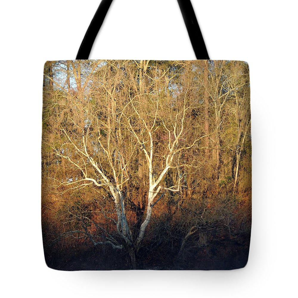 Digital Photography Tote Bag featuring the photograph Flint River 16 by Kim Pate