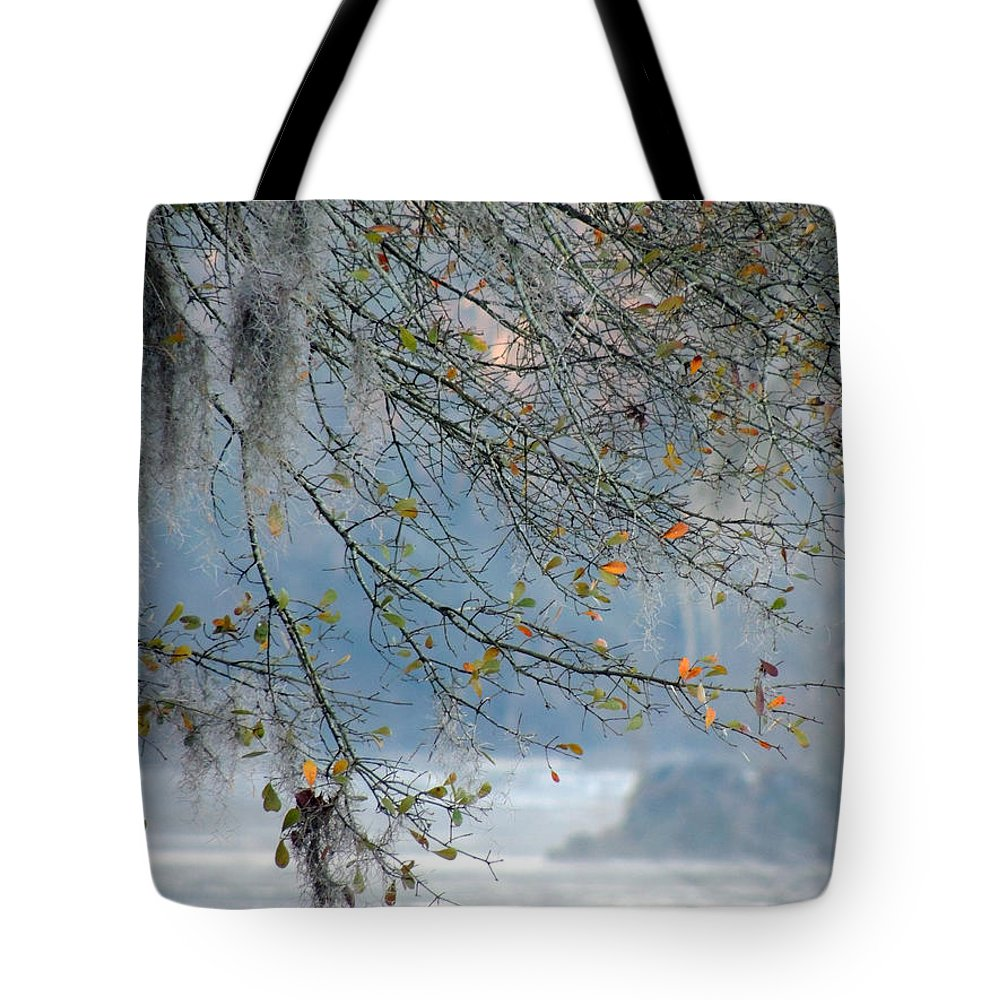 Digital Photography Tote Bag featuring the photograph Flint River 29 by Kim Pate