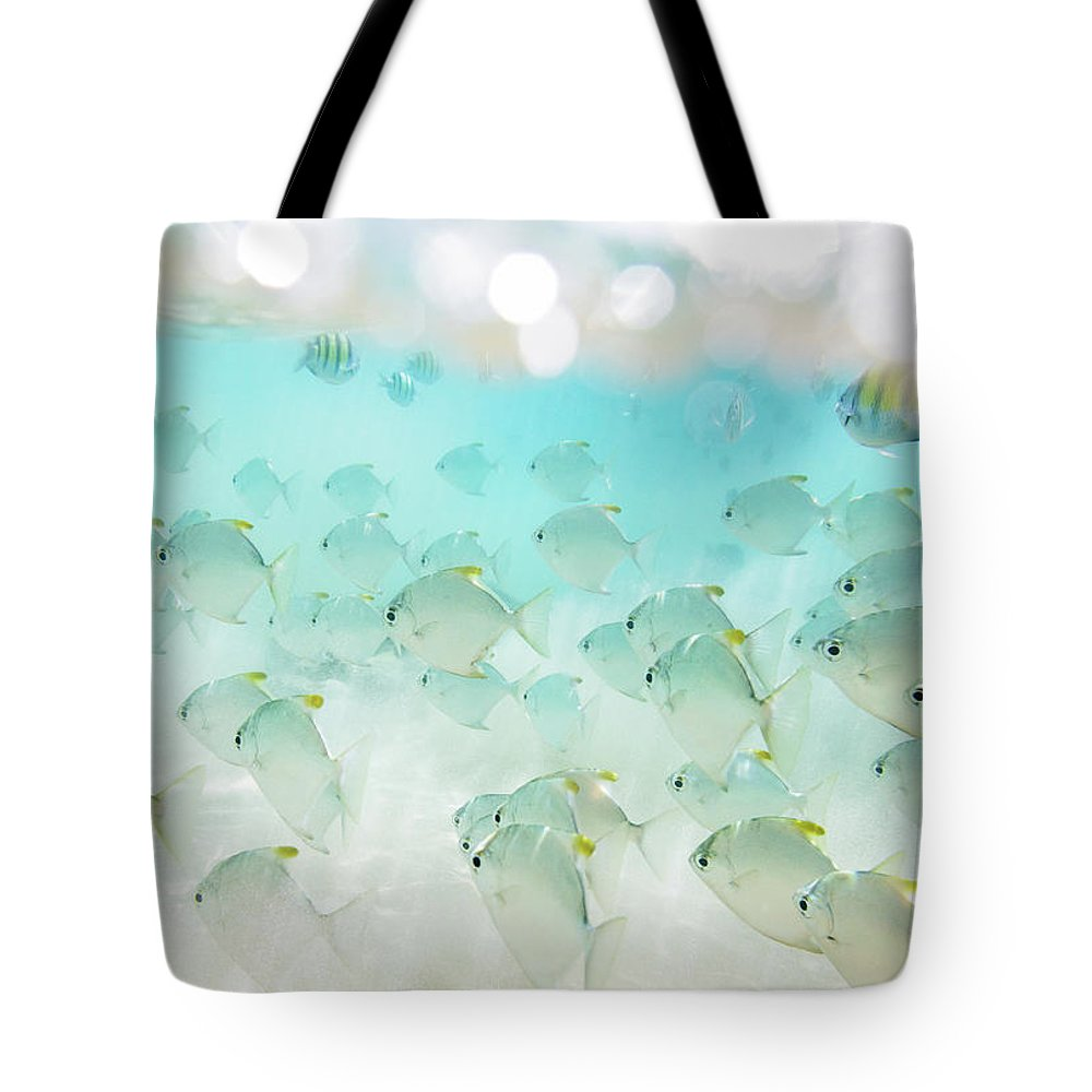 Underwater Tote Bag featuring the photograph Flock Of Fish by Danilovi