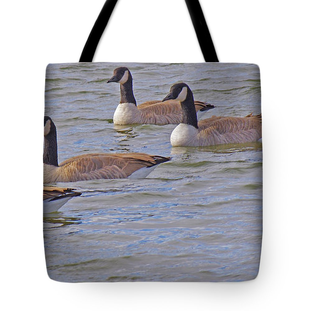 Canadian Geese Tote Bag featuring the photograph Flock Of Five by Mike and Sharon Mathews