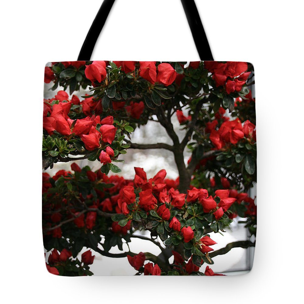 Flower Tote Bag featuring the photograph Floral Bonsai by Susan Herber