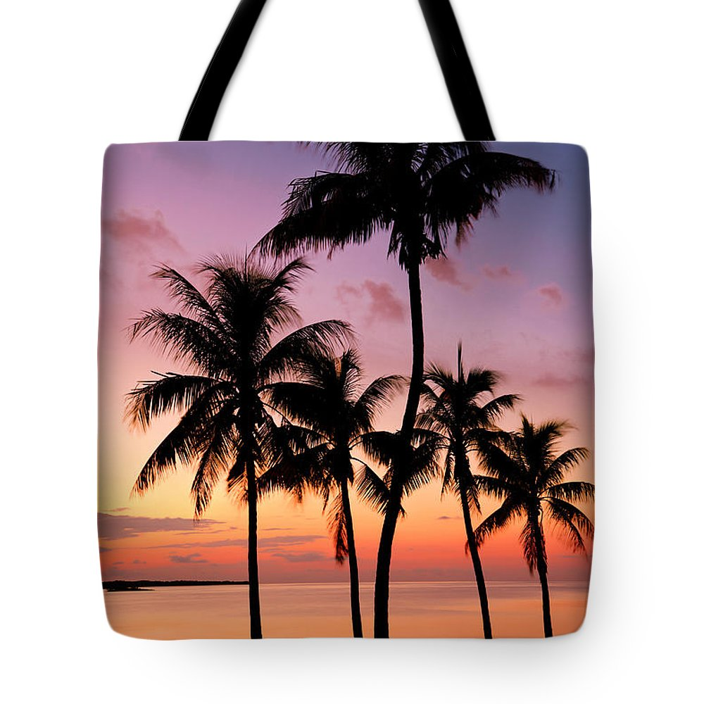 Sunset Tote Bag featuring the photograph Florida Breeze by Chad Dutson