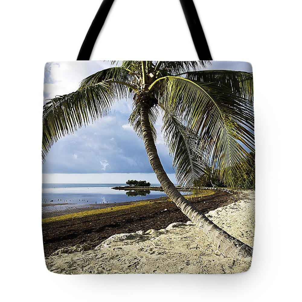 Florida Tote Bag featuring the photograph Florida Keys Beach by Bruce Bain