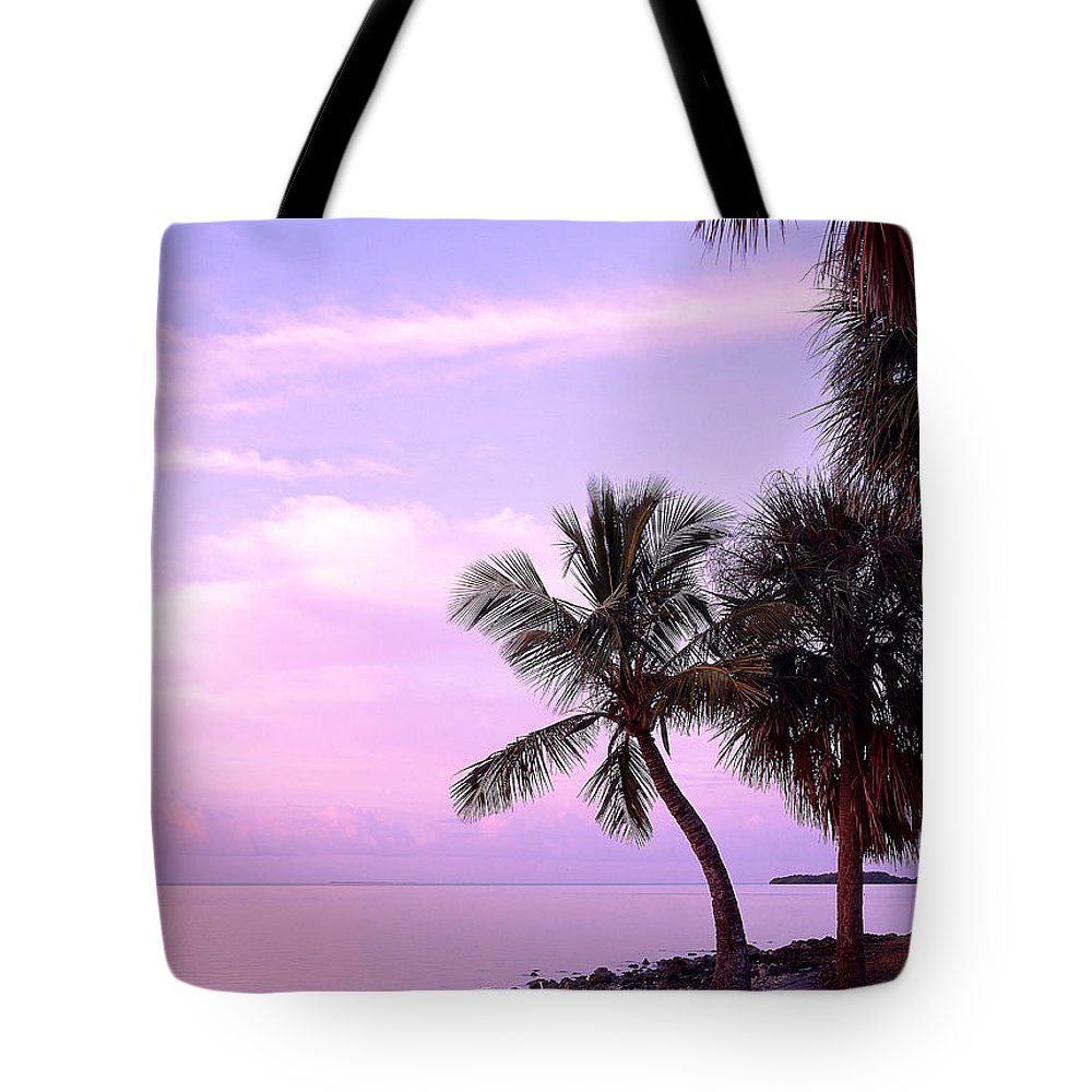 Sunrise Tote Bag featuring the photograph Florida Sunrise by David Davis