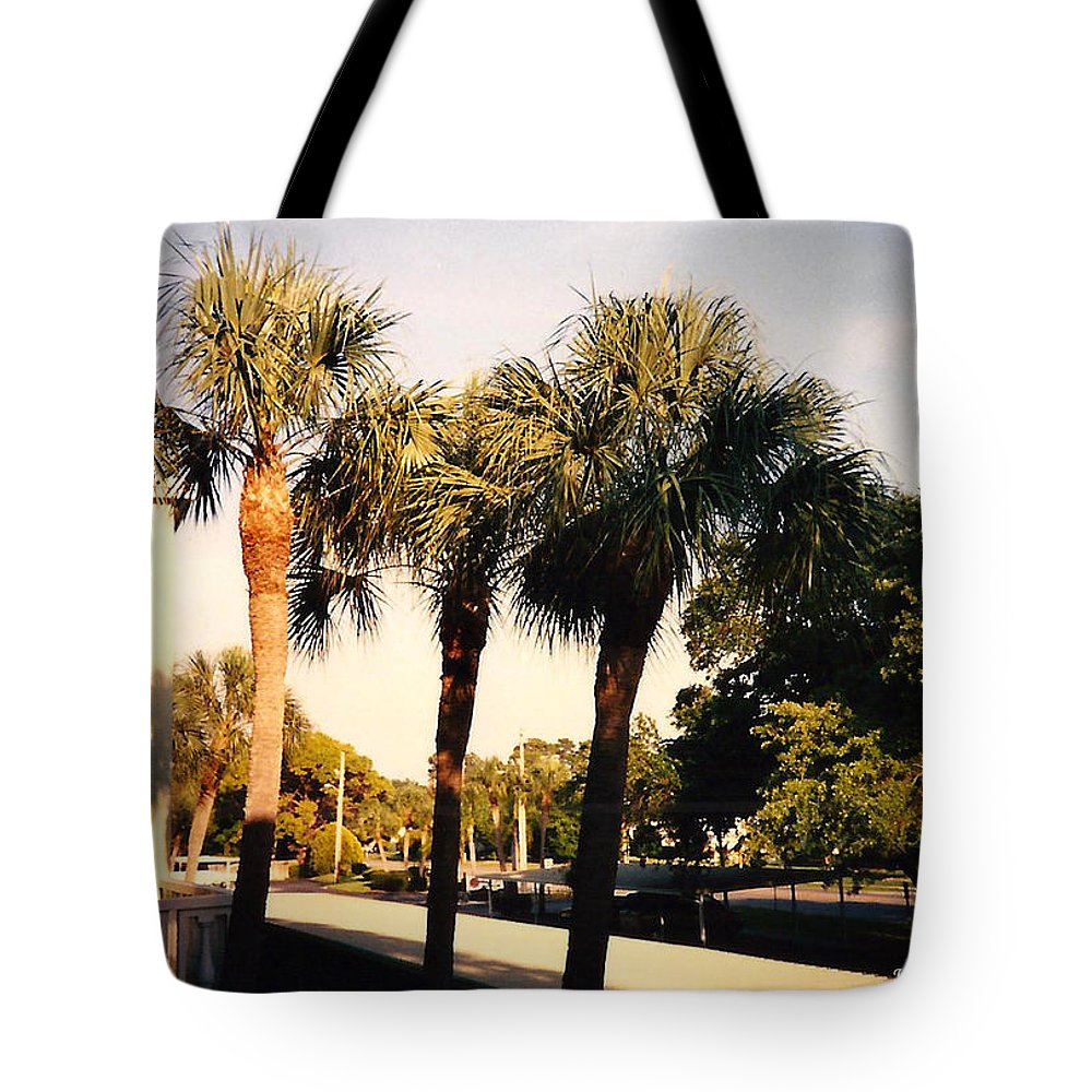 Florida Tote Bag featuring the photograph Florida Trees 2 by Verana Stark